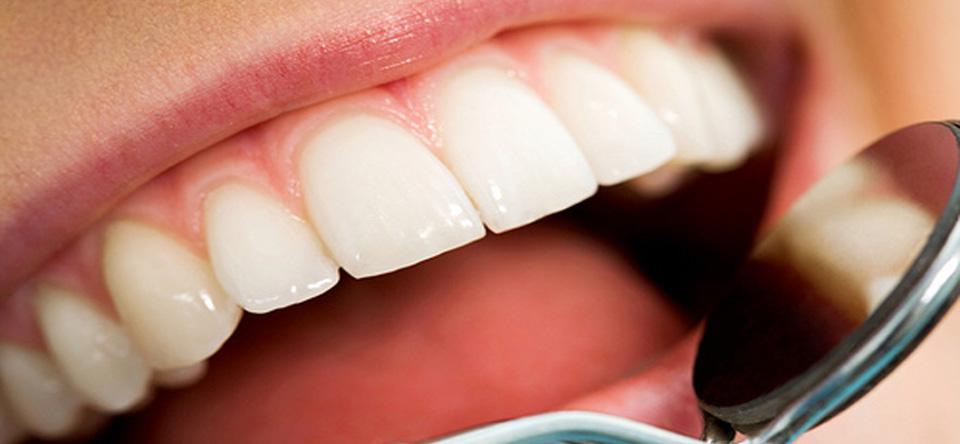 Williamsville-Dentist3.jpg