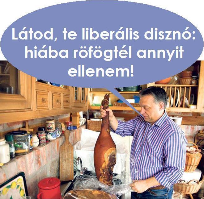 liberalis.jpg