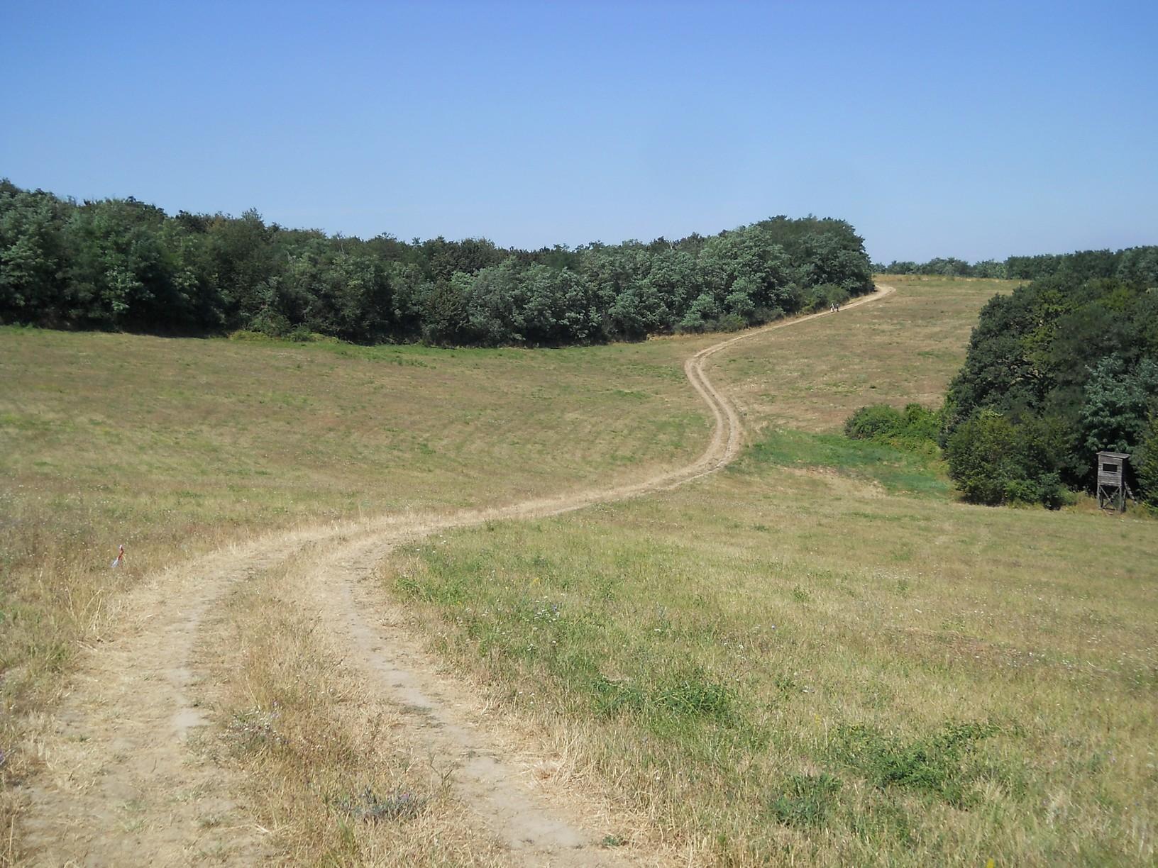 Széles kaszálókon át vezet az út Felsőpetény felé