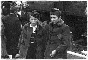 zsidó gyerekek Birkenauban.jpg
