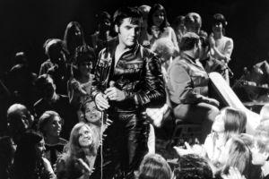 Elvis__Presley_cambeak_special_3.jpg