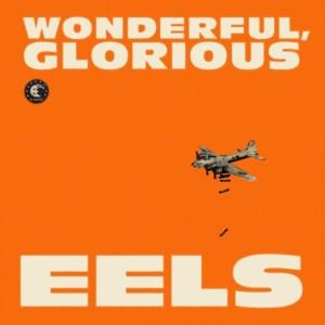 eels wonderful.jpg
