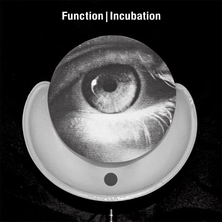 function-incubation.jpg
