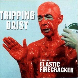 tripping daisy.jpg