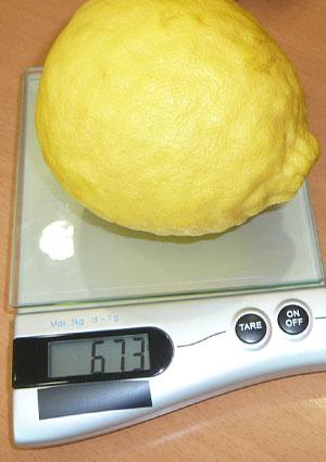 citrom01.jpg