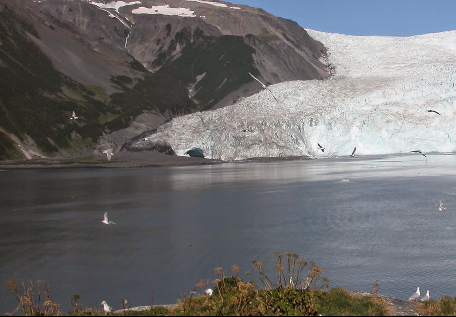 15_aialik_glacier_2005.jpg