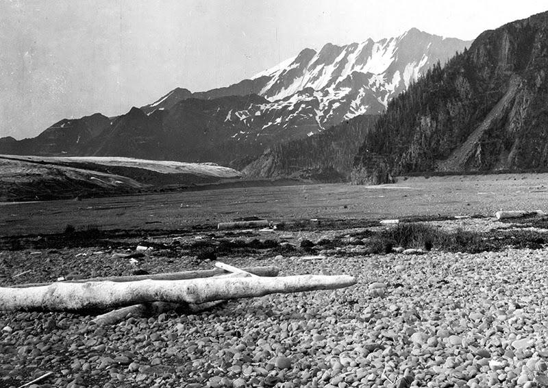 20_bear_glacier_01_1909.jpg