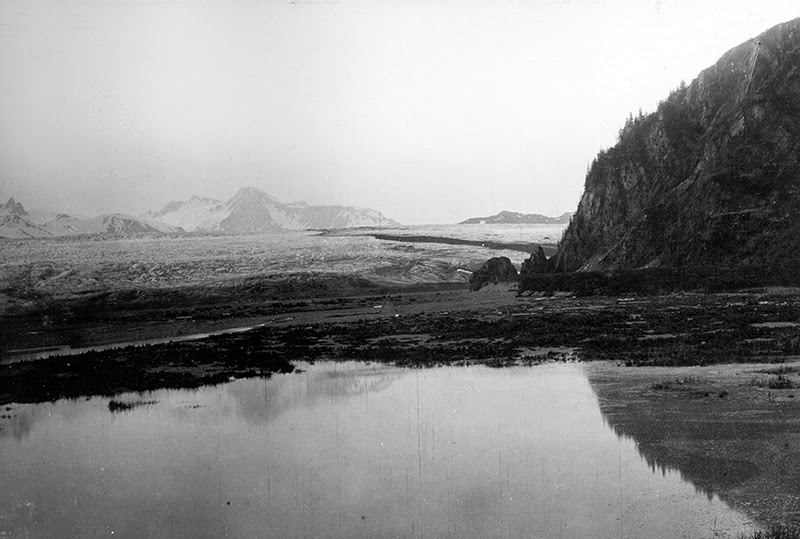 21_bear_glacier_03_1909.jpg