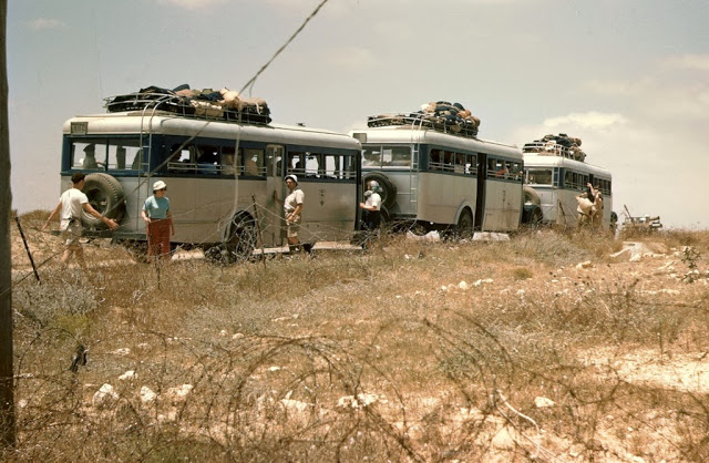 Buses in Israel in the 1950's (3).jpg