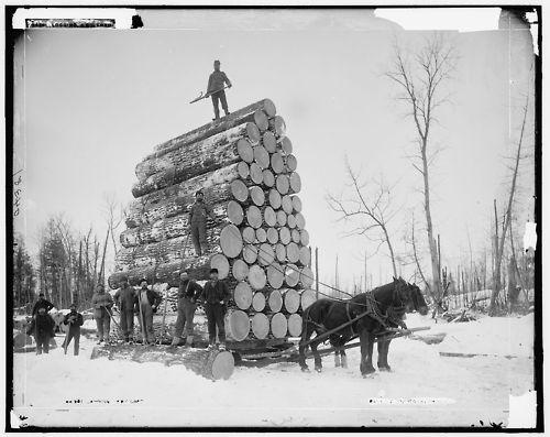 1890. Michigan-i favágók..jpg