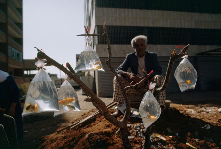 1983. Bejrút, Libanon. Aranyhalárus..jpg