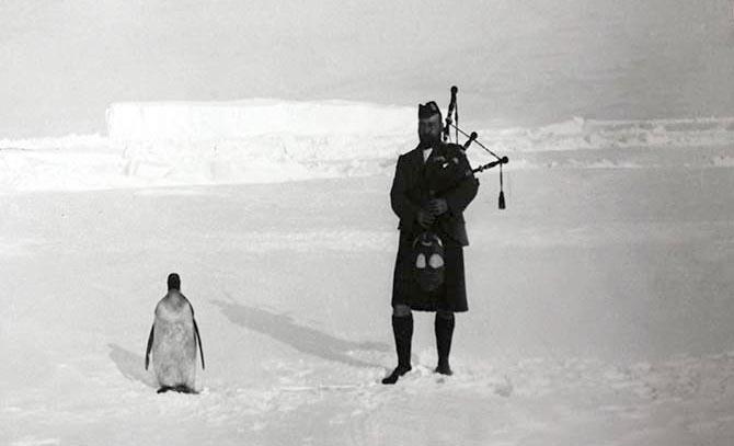 1904. A skót Antarktisz expedíció tagja népviseletben egy pingvinnek játszik skót dudán..jpg