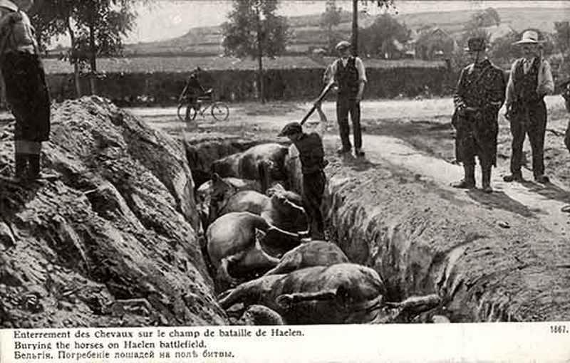 1914. Lovak temetése Belgiumban egy csata után..jpg