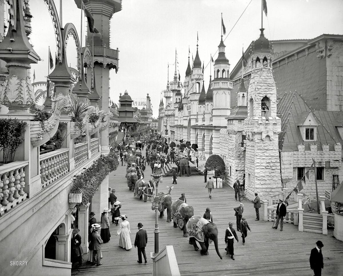 1905. Elefánt parádé a Coney Island-en..jpg