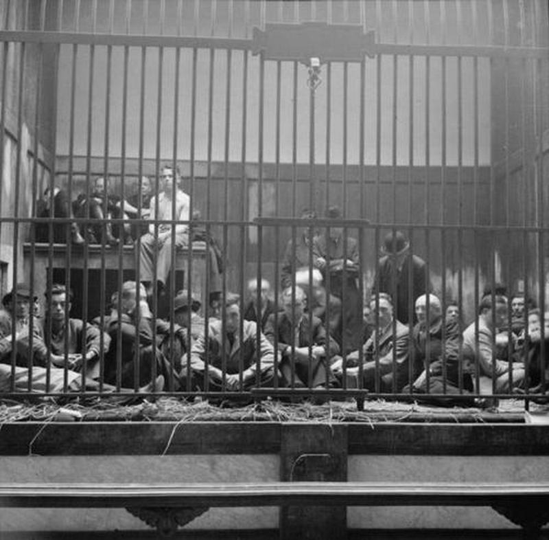 1944. Német foglyok és belga kollaboránsok átmenetileg az antwerpeni állatkert oroszlánketrecébe zárva..jpg