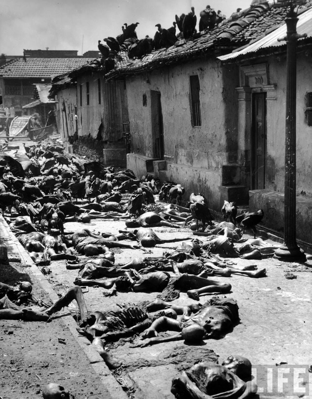 1947. Keselyűk lakmároznak a holttestekből az India és Pakisztán szétválásakori erőszakhullám alatt..jpg