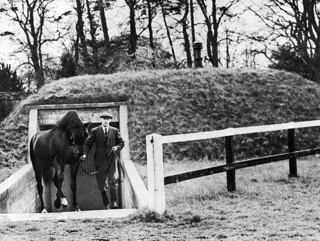 1941-nearco-stallion-england.jpg