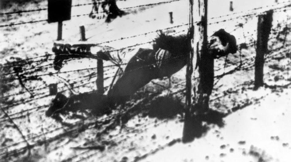 1943. április. Sztálin fiát Jakovot menekülés közben agyonlőtték a szögesdrót kerítésnél a sachsenhauseni koncentrációs táborban..jpg