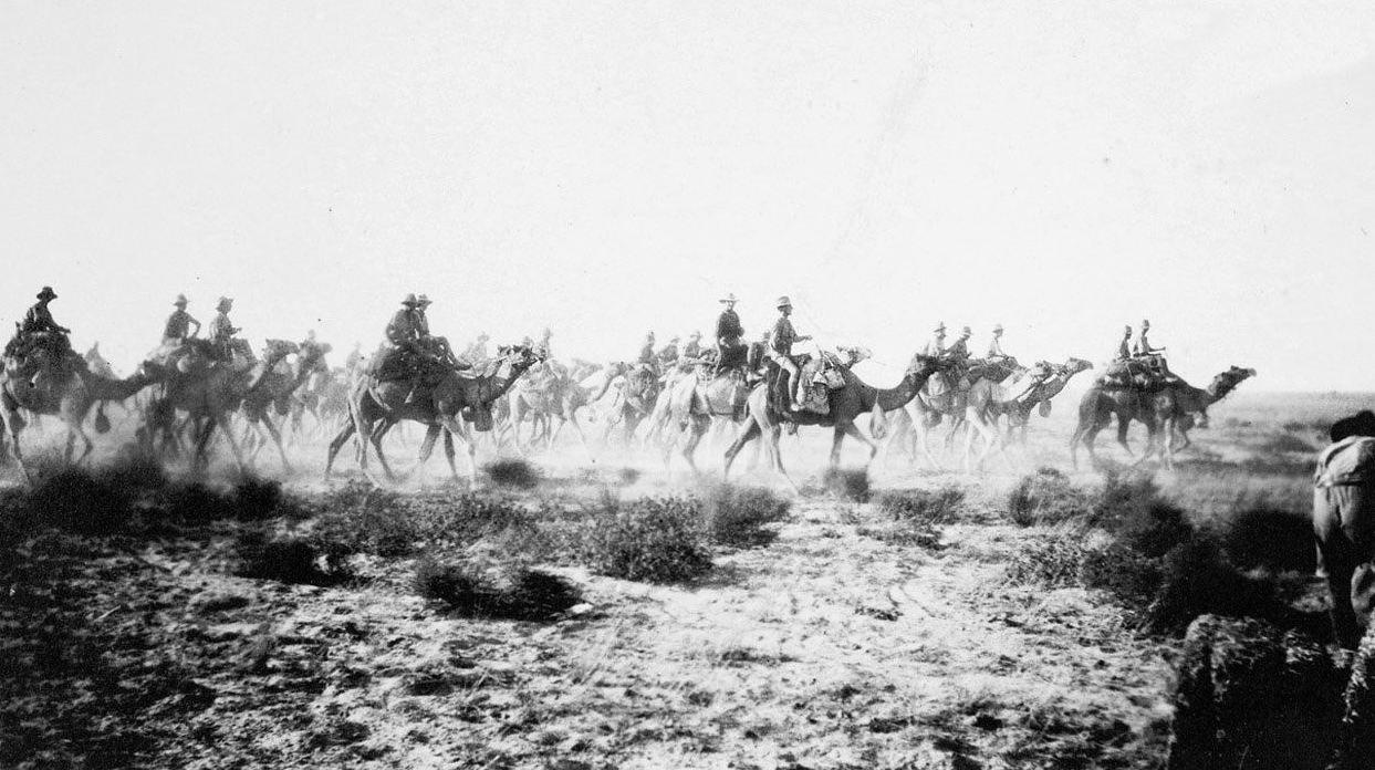 1917. Ausztrál tevés egység bevetésen az első világháborúban a közel keleti hadszíntéren Beershebánál..jpg