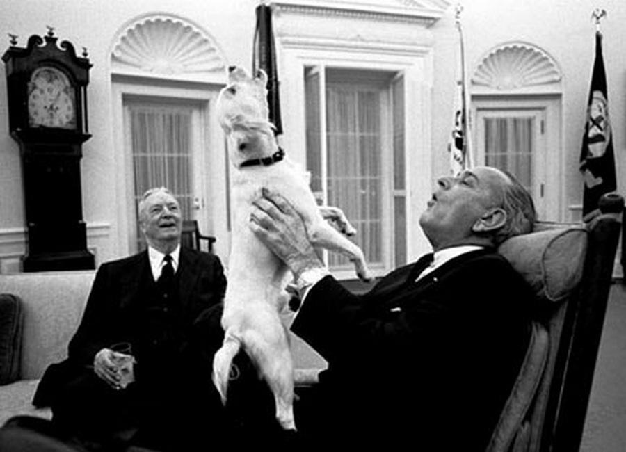 1968. Lyndon B. Johnson az akkori USA elnök együtt vonyít kutyájával..jpg