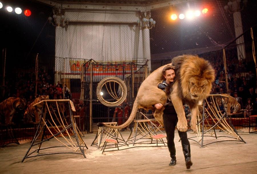 1966. Bengáli tigris idomárja nyakában, a moszkvai nagycirkuszban..jpg