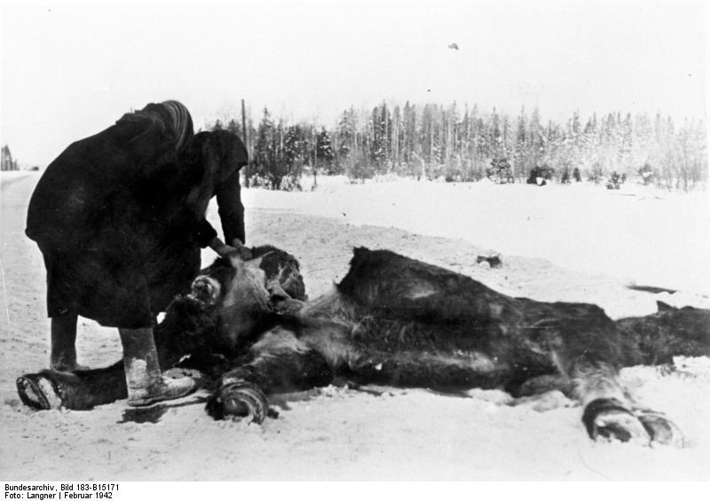 1942. Szovjet nők egy elhullott lovat darabolnak fel..jpg