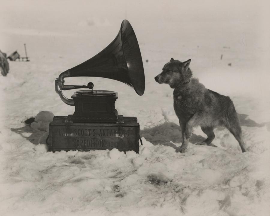 1911. Robert Scott déli sarki expedíciójára gramofont is vitt. Chris nevű kutyájának nagyon tetszett..jpg