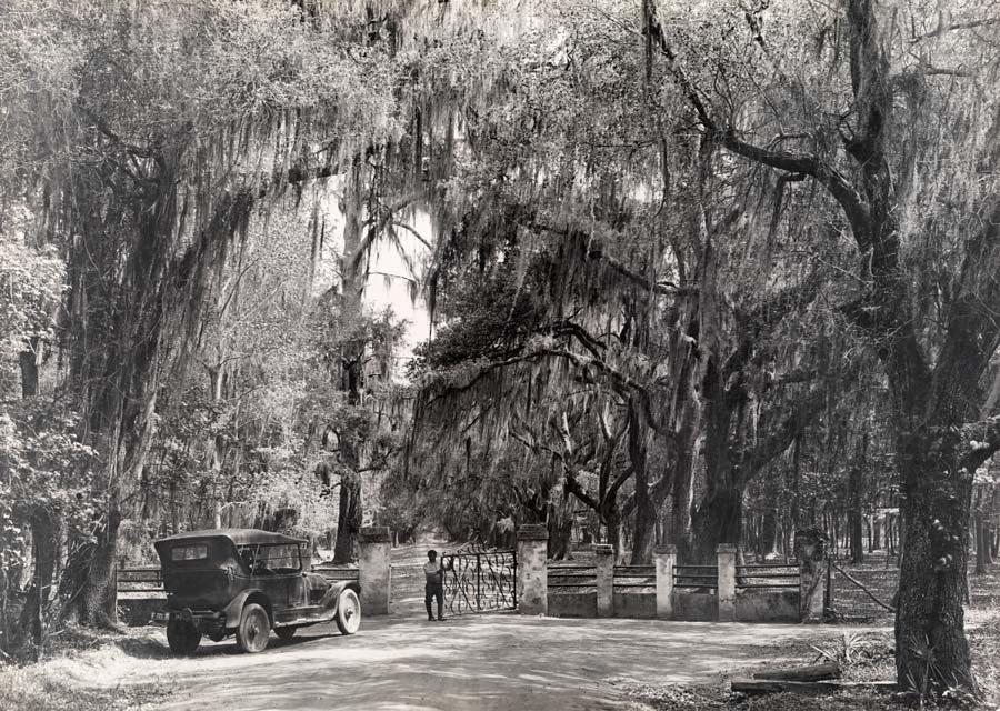 1926. Dél-Karolina-i ültetvény bejárata..jpg