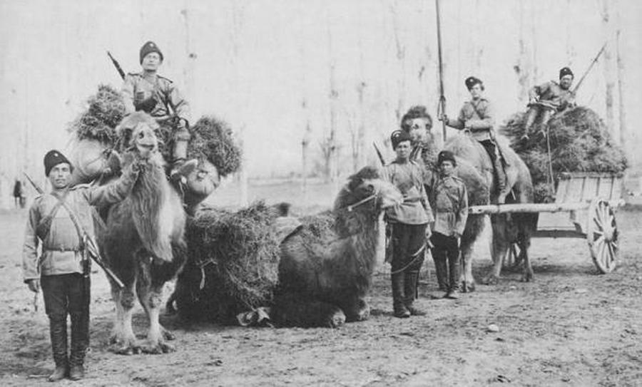 1875. Orenburgi kozákok.jpg