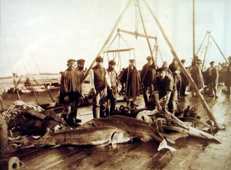 1901_tokhal_halaszok_asztrahanban_a_kaszpi-tengernel_.jpg