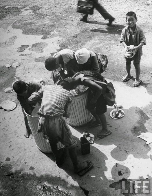 1946_haborus_arvak_guberalnak_tokio_japan_.jpg