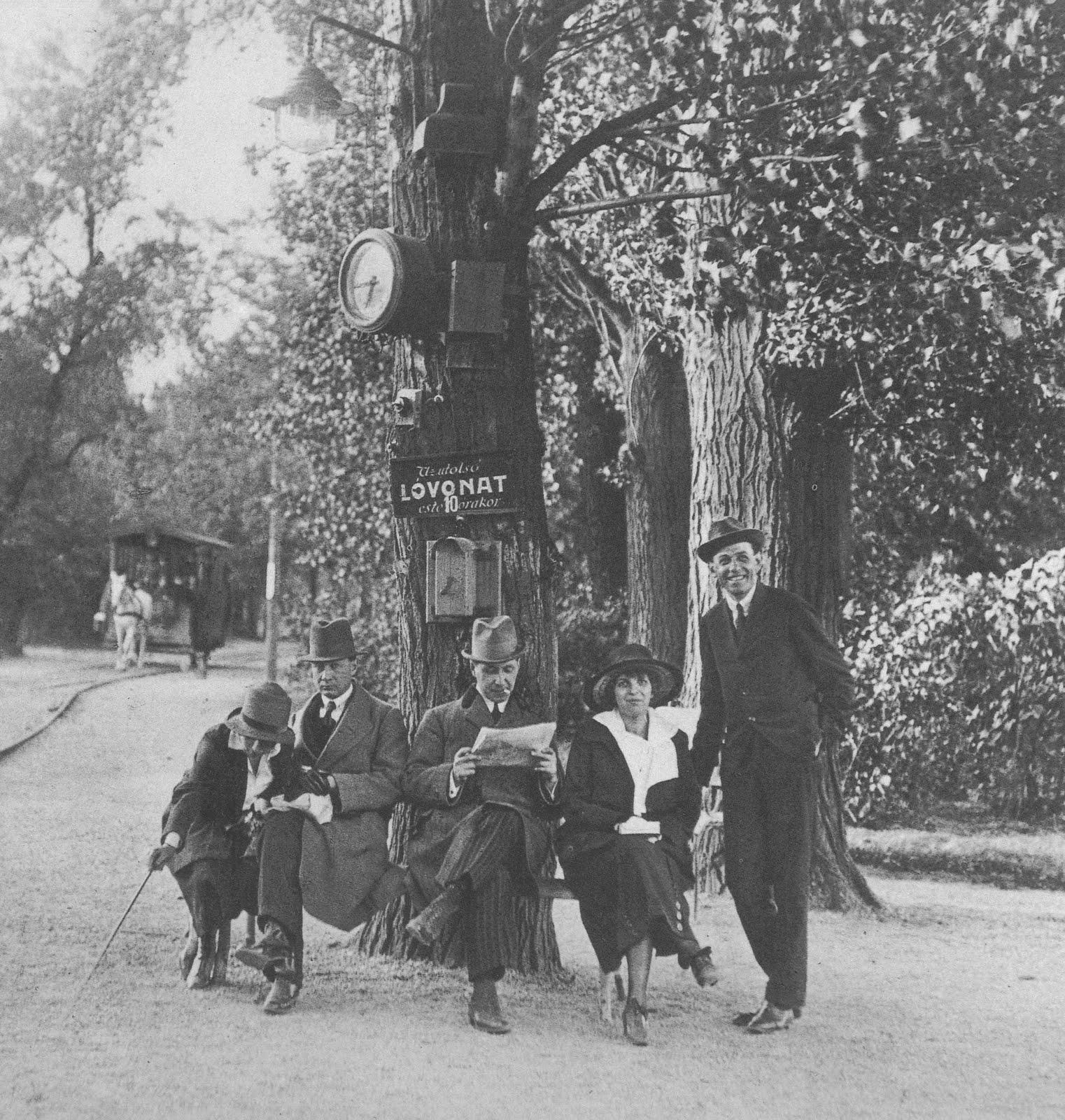 1920. Lóvasút Budapest Margit-sziget.jpg