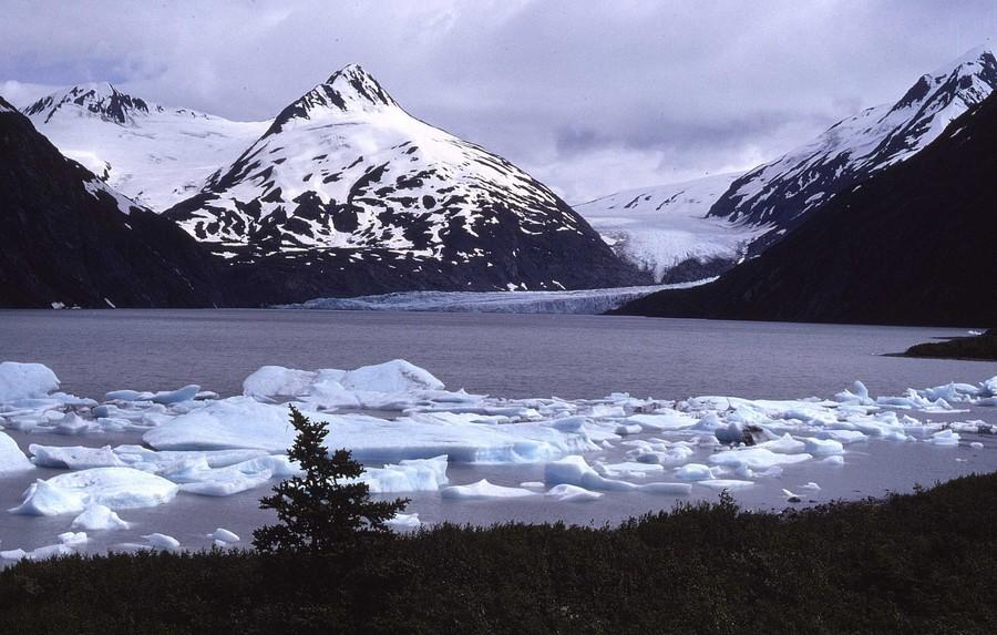 iceflows-denali-alaska-1982.jpg