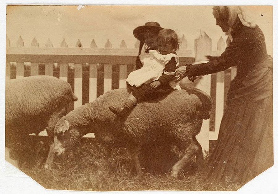 Street Scenes of Sydney, ca. 1885-1890 (13).jpg