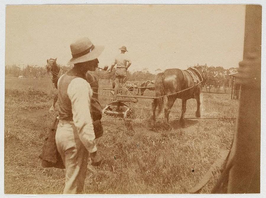 Street Scenes of Sydney, ca. 1885-1890 (18).jpg