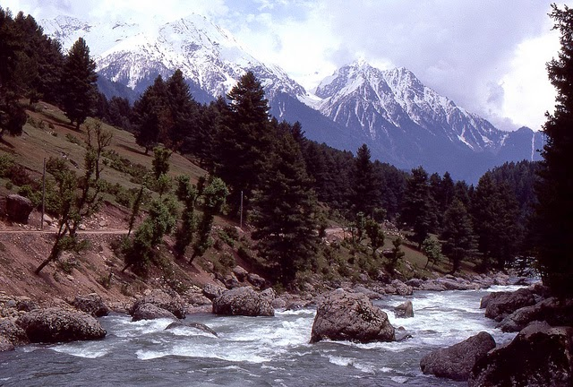 Vale of Kashmir, India, 1982 (35).jpg