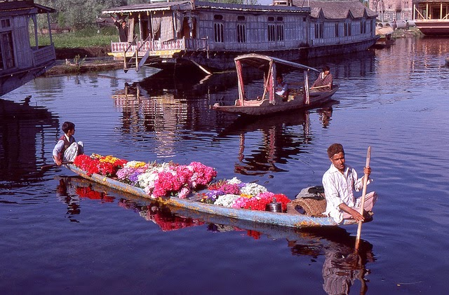 Vale of Kashmir, India, 1982 (5).jpg