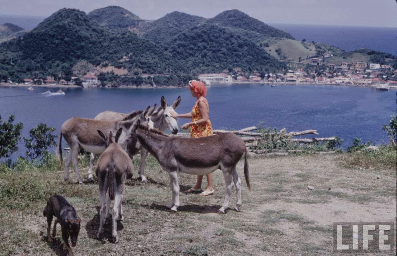 Caribbean in 1968 (22).jpg