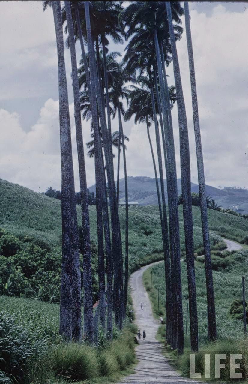 Caribbean in 1968 (7).jpg