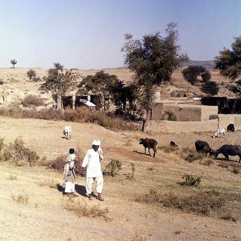 Pakistan in 1957 (1).jpg
