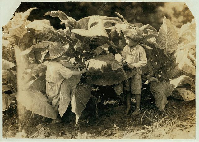 Old Photos of Child Labor between 1908 and 1924 (34).jpg