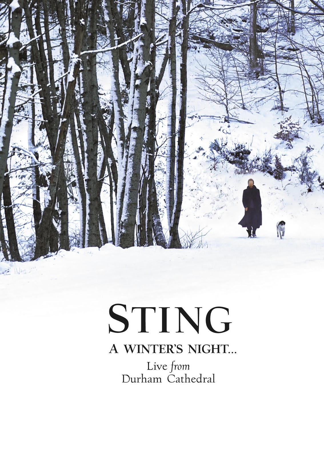 sting_winter_cover.jpg