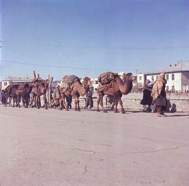 Afghanistan in the 1960s (9).jpg