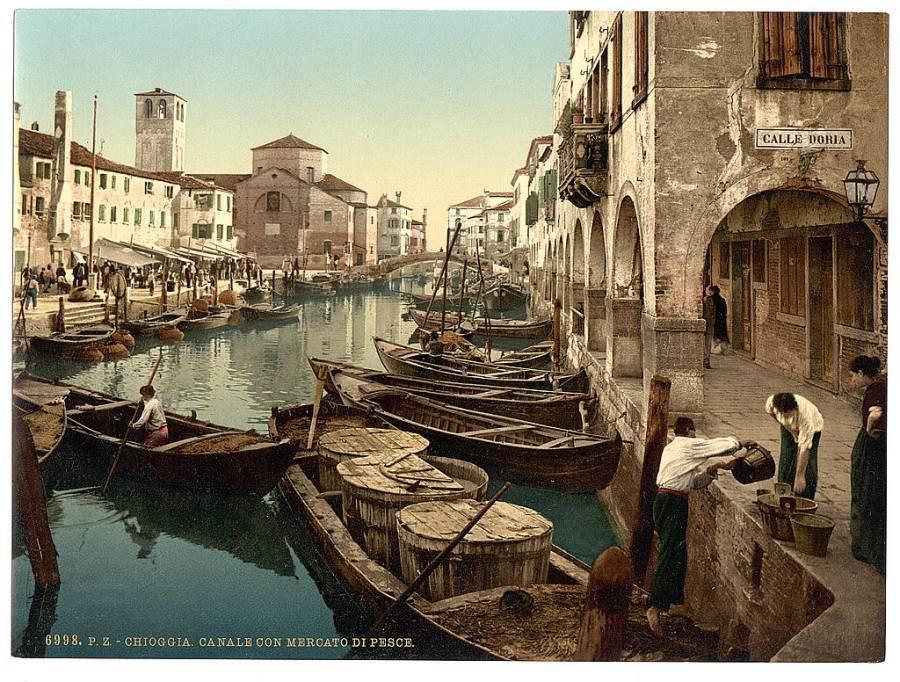 Chioggia, halászbárkák.jpg