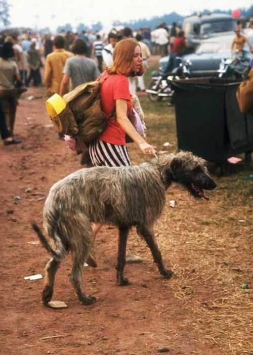 Photos-of-Life-at-Woodstock-1969-24.jpg