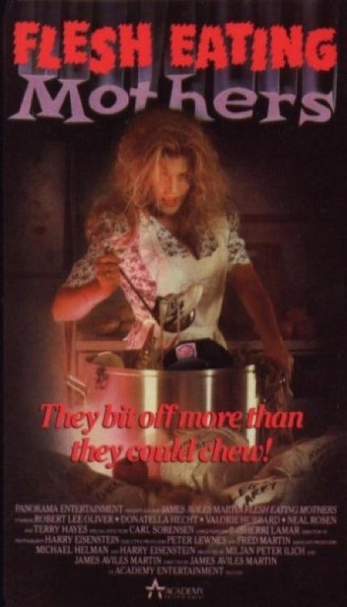 awesomely-bad-80s-vhs-cover-art-24-430-75.jpg