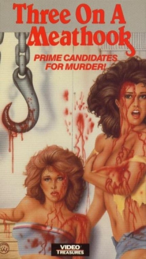 awesomely-bad-80s-vhs-cover-art-67-430-75.jpg