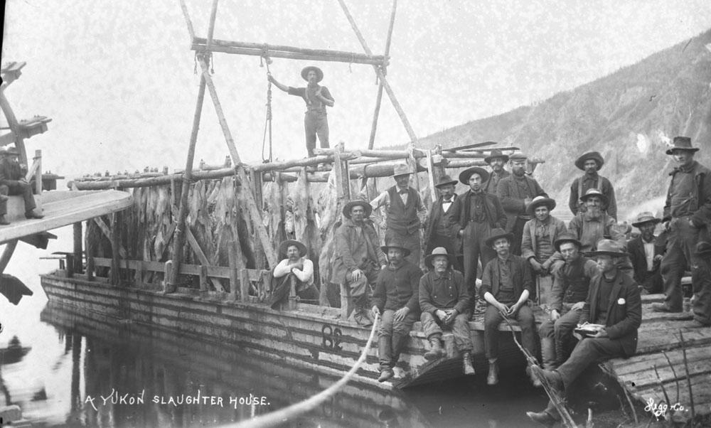1898. Vágóhíd-hajó a Yukon folyón Alaszkában a Klondike aranyláz idején..jpg