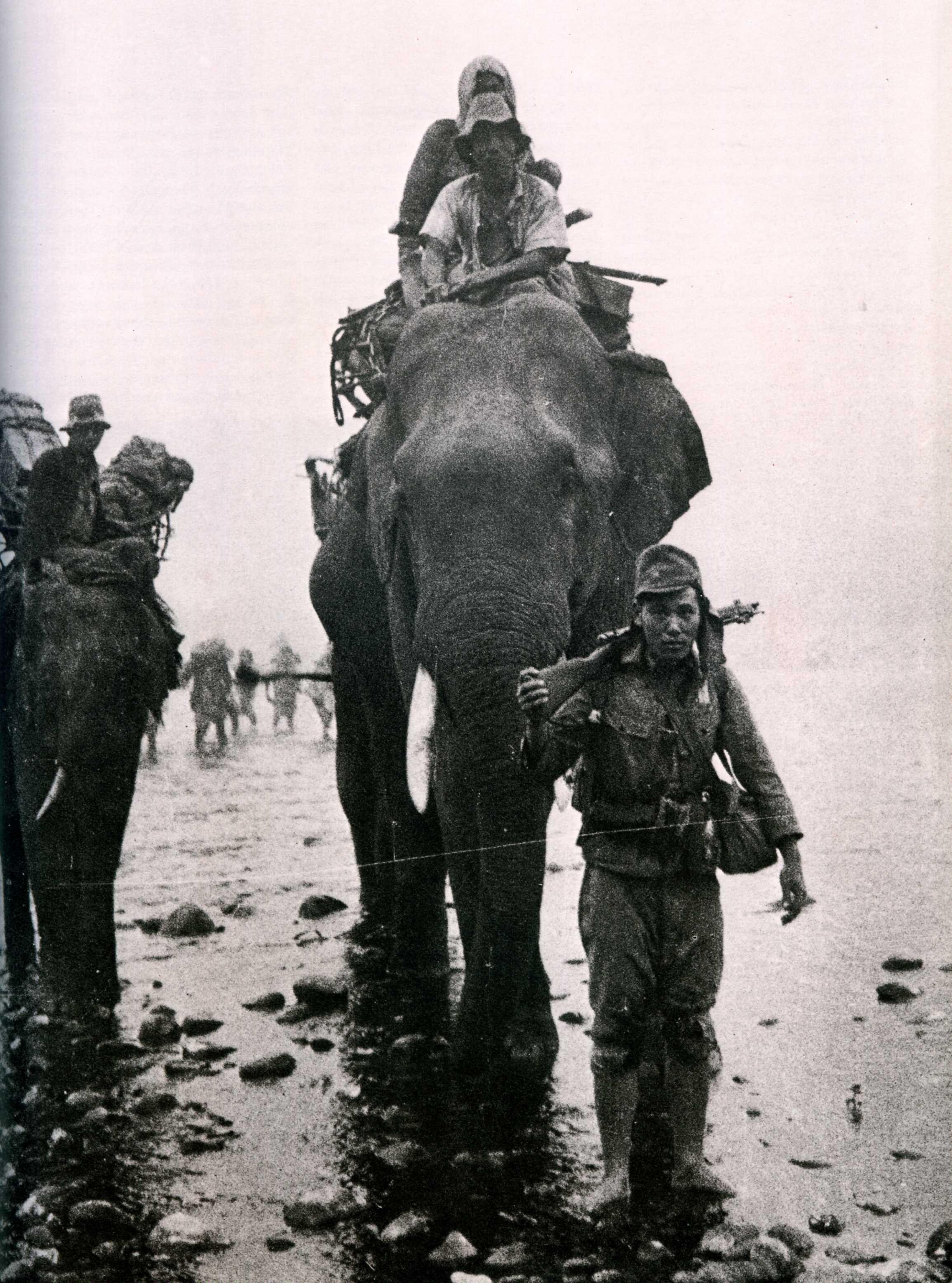 1944. Japán katonák elefánttal Burmában..jpg