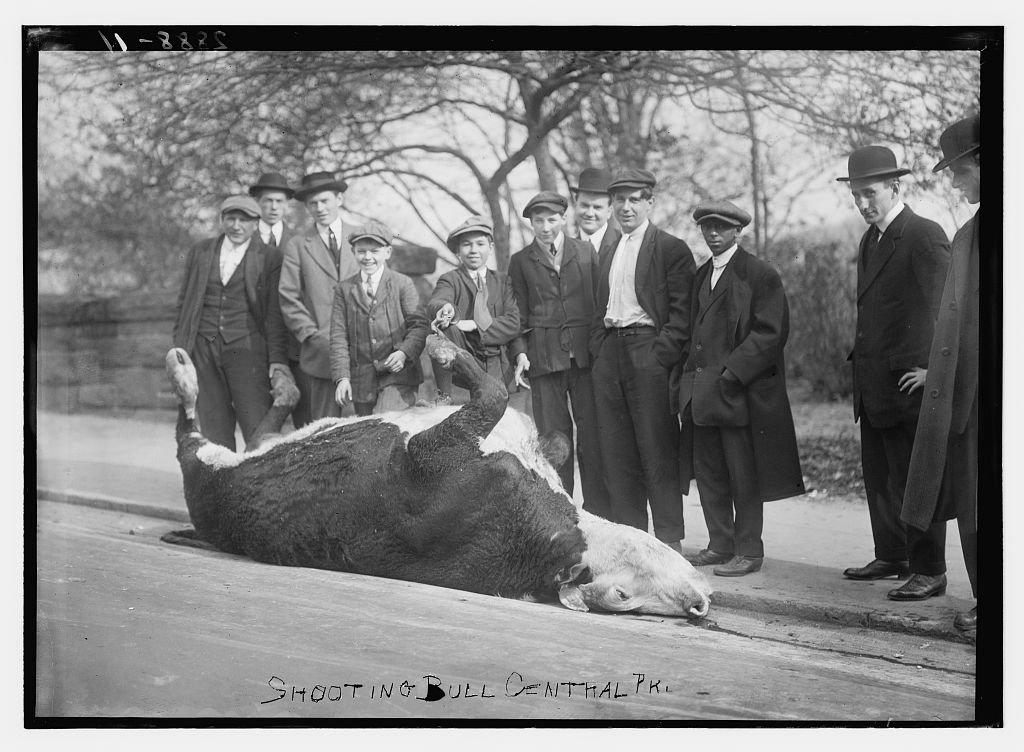 1910_central-park.jpg